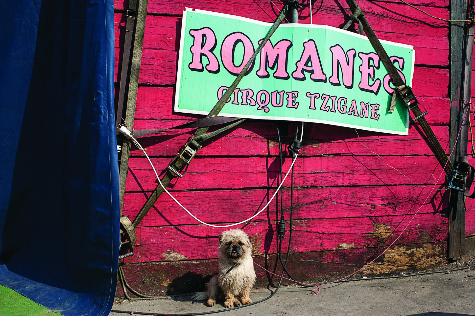 Le cirque Romanes