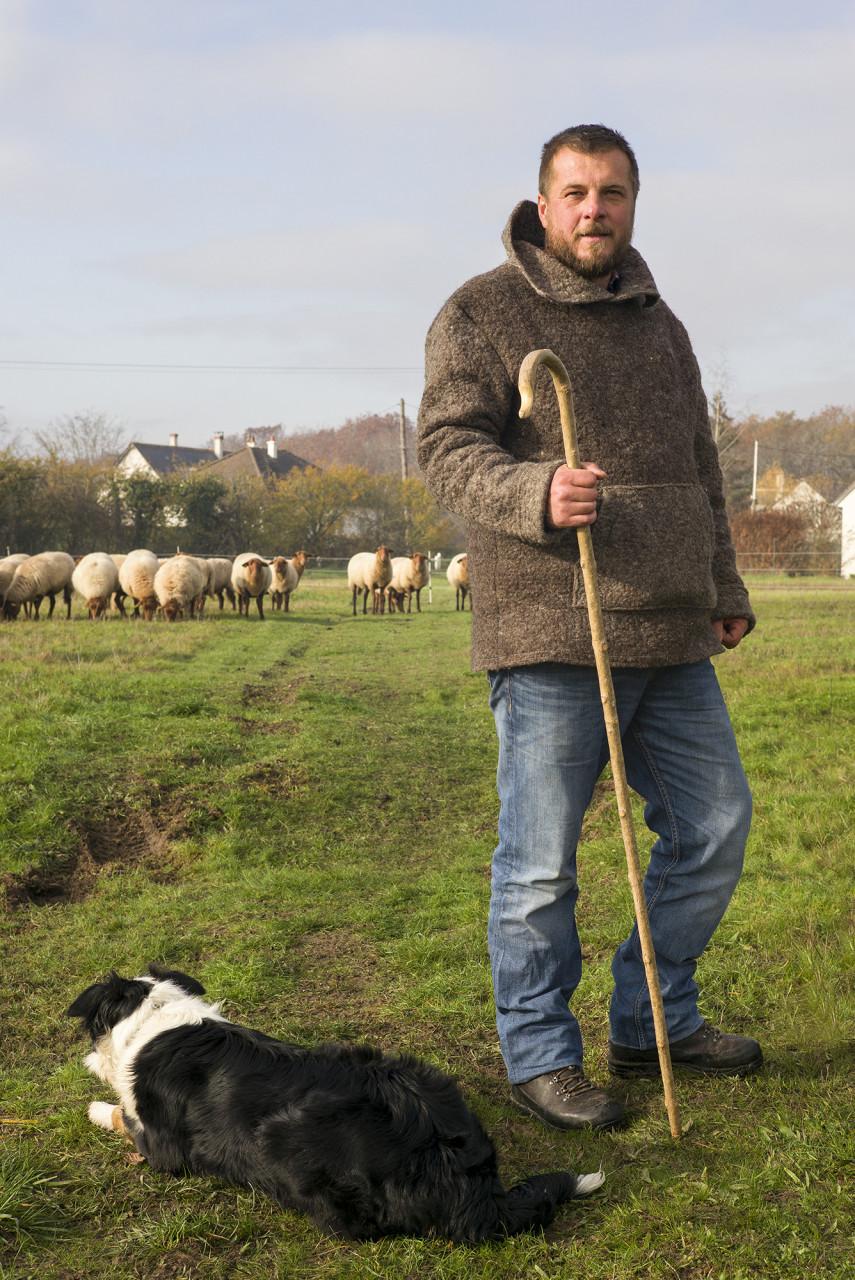 Matthias Hallouin, éleveur de brebis solognotes - Pour Blois Mag - janvier 2020
